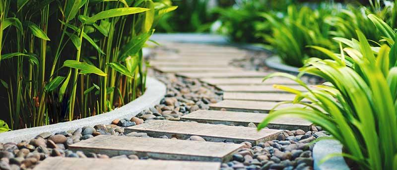 rénovation de jardin